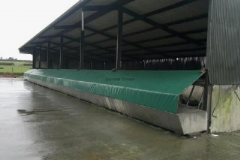 Cattle feeding trough covered in PVC